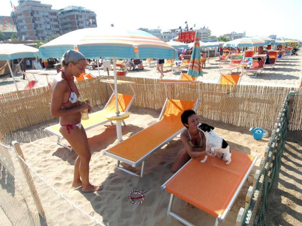 Rimini, una spiaggia dedicata ai caniAl Bagno 82 entra solo chi ...