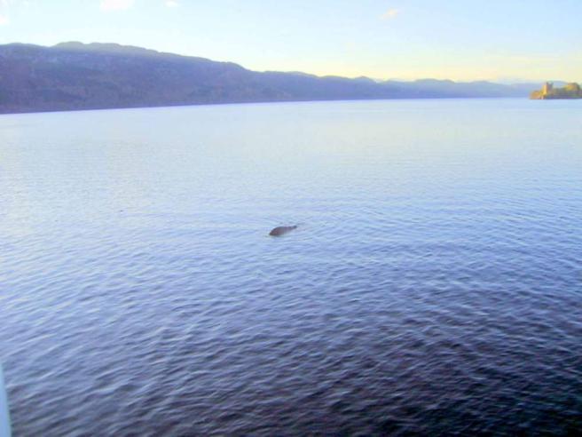 Loch Ness Spunta Una Nuova Foto Del Mostro Tgcom24 Foto 1