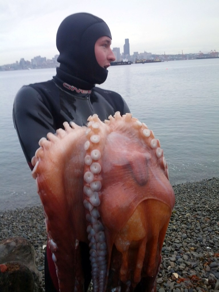 how to catch the squid in russia unturned